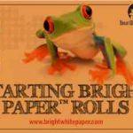 Starting Bright Paper™ Rolls 4