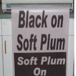 Big_Plum