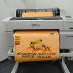 Starting Bright Paper™ Rolls 5